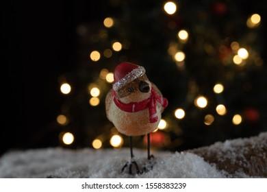 Little christmas bird in the snow