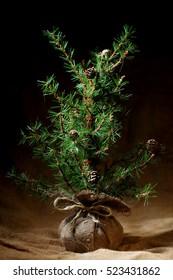Little Christmas tree background