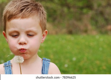 Little Country Boy Blows on Dandelion to make a Wish With Copy Space