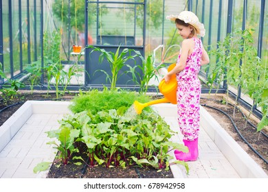 Little country girl wearing summer hat helping her parents to water plants and vegetables in greenhouse