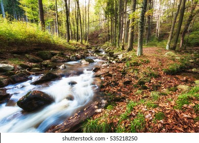 Little creek called Ilse in Harz mountains