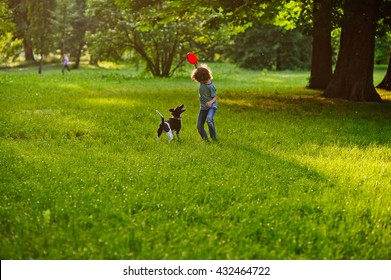 The little curly fellow trains the doggy on a lawn in park. Boy is holding a frisbee. His pet attentively looks at the owner. The doggy has raised a tail up. They like to play together.