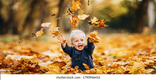 Little cute baby boy have fun outdoors in the park in autumn time