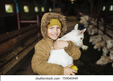 Little cute boy hugging goat on the goat cheese farm