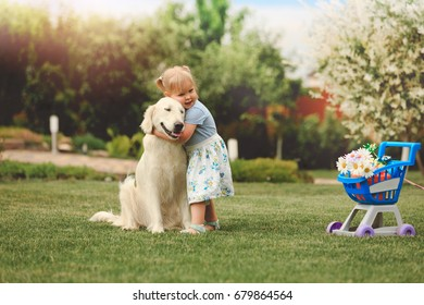 Little cute girl embrace with big golden retriever in the garden at summer day