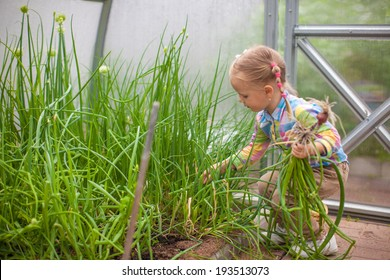 Young Girl Herbs Images, Stock Photos & Vectors | Shutterstock
