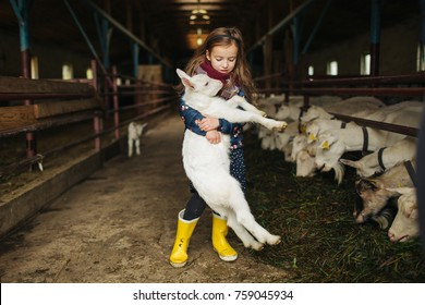 Little cute girl hugging goat on the goat cheese farm