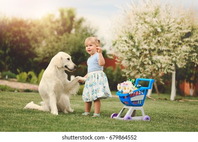 Little cute girl playing with big golden retriever in the garden at summer day