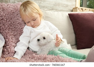 Little cute girl with puppy at home