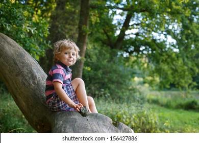 Little cute toddler boy having fun on tree in summer forest