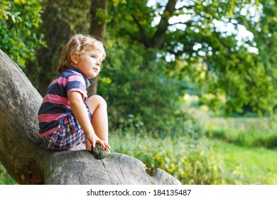 Little cute toddler boy having fun and climbing on tree in summer forest