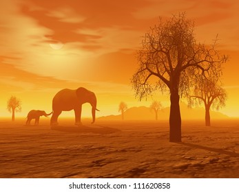 Little elephant holding its mum's queue in the savannah with baobabs by sunset