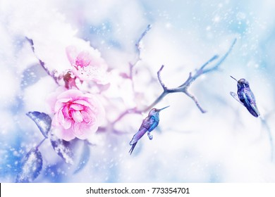 Little fantastic blue birds in the snow and frost on the background of beautiful pink roses. Artistic Christmas winter image. Selective focus.