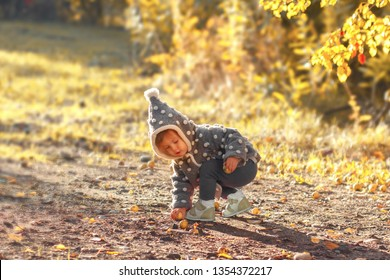 Little fashionista in a stylish coat harvesting ripe apples while walking in  autumn park. Cute little girl leaned over to pick up fruit from the ground. Autumn is a fabulous time to harvest.