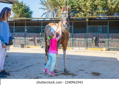 little four years old girl caressing with hands a horse next to her mother outside of stables in a riding center
