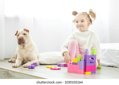 A little funny little girl is playing in the room. The dog lies. The concept of lifestyle, childhood, upbringing, family.