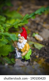Little garden gnome with watering can