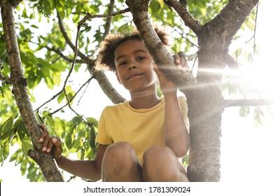 Little garedener in the nature