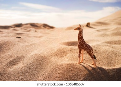 little giraffe toy on yellow seaside sand