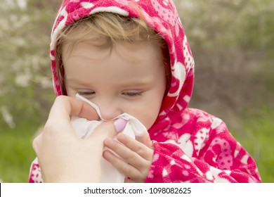 A little girl with an allergy sneezes against the background of green grass, in the spring. Mom wiping snot
