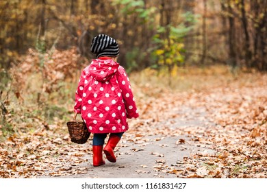 Little girl in autumn forest with basket, looking for the mushrooms. Fall day. Little girl in pea jacket exploring nature.