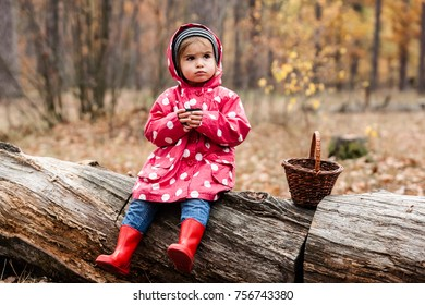 Little girl in autumn forest with basket, drinking tea. Fall day. Little girl in pea jacket exploring nature.