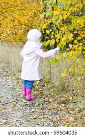 little girl in autumnal nature