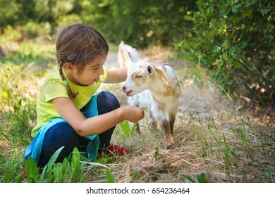 Little Girl with Baby Goat