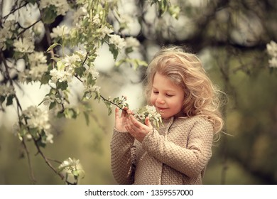Little girl in the blossoming apple garden. Image with selective focus and toning.