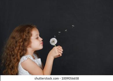Little girl blowing dandelion blackboard background.
