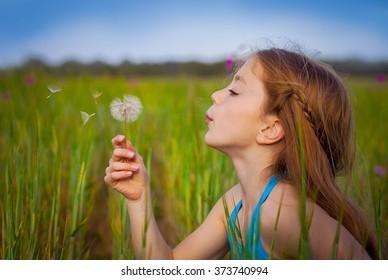 little girl blowing dandelion in field
