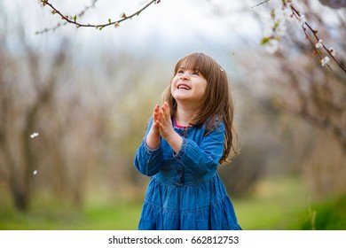 A little girl in a blue dress folded her hands in prayer, standing in the midst of a flowering apricot garden