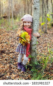 little girl with a bouquet of maple leaves in the autumn Park