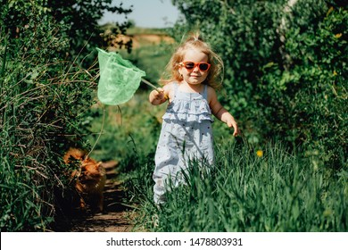 Little girl with butterfly net catching butterflies in the field sunny summer day