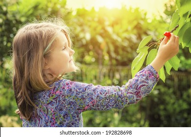 little girl and cherry tree with summer sun in background