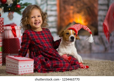 Little girl child celebrates Christmas with dog Jack Russell Terrier at home under the Christmas tree