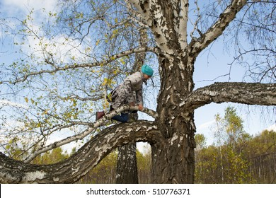 little girl to climb a tree
