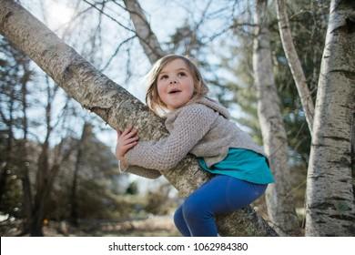 Little girl climbing a tree