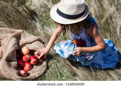 little girl collecting apples