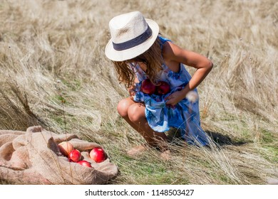 Little girl collecting apples into her dress