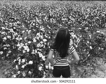little girl in cotton fields staring off in the distance in black and white/ Little girl looking beyond hurdles