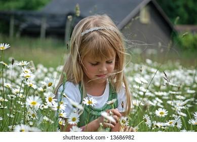 little girl in a daisy field