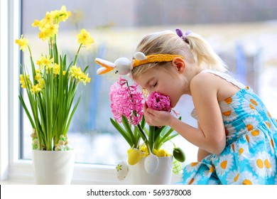 Little girl decorating window with spring flowers and Easter eggs. Child taking care of plants. Toddler taking care about hyacinths and daffodils. Easter home interior and decoration.