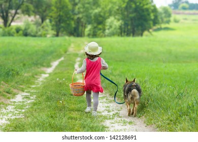Little girl with dog going on the road to the picnic