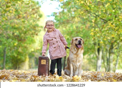 little girl with dog and suitcase in autumn park