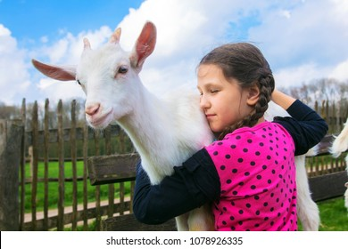 Little girl embracing a kid goat on a farm. Child holds and hugs the baby goat kid, goatling. Animal care and love concept. Children need to communicate with animals.