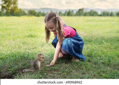 Little girl feeding a ground squirrel outdoors