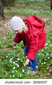 Little girl with flowers in the forest