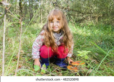 The little girl in the forest and toadstools