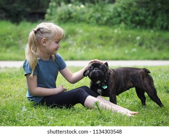 A little girl and a funny dog sitting in the grass. Child stroking a bulldog